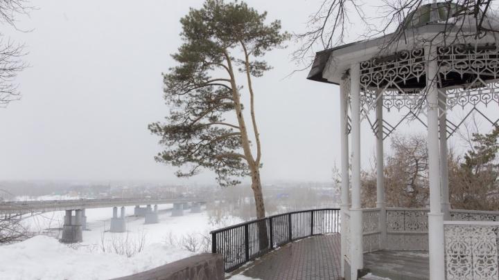 Ветер и скользкие дороги: Башкирию накрыла снежная метель