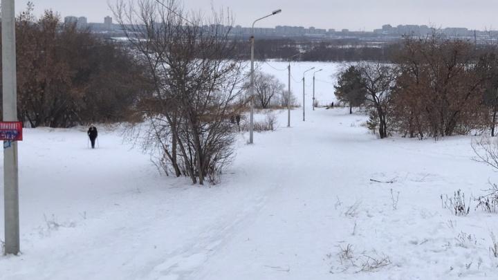 Руководство Советского парка решило помочь с похоронами родным разбившейся омички
