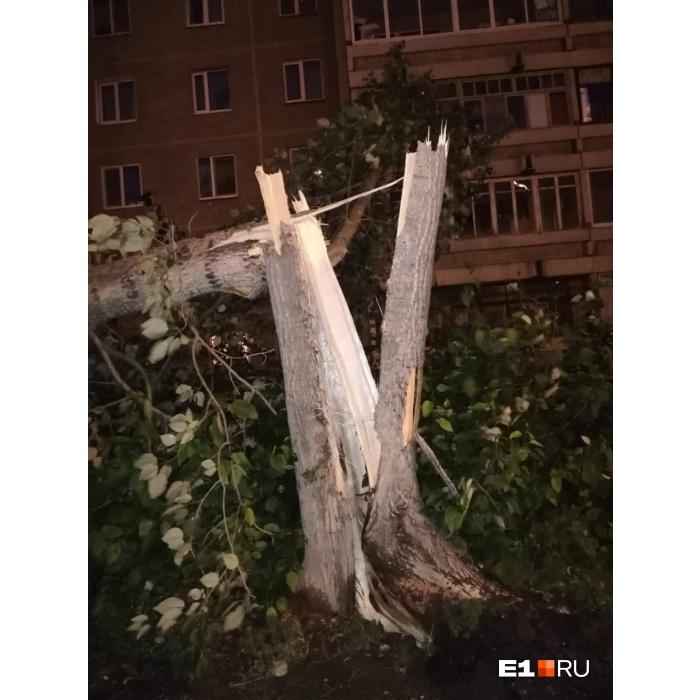 Собираем последствия обрушившейся на Екатеринбург стихии в режиме онлайн