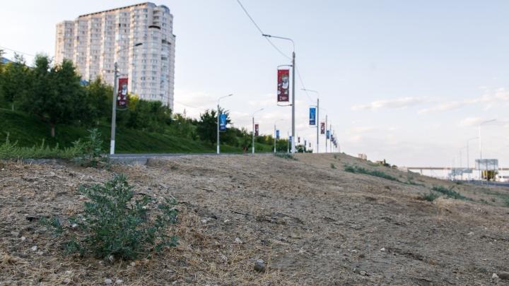 «Мы либо убьем траву, либо вырастим»:крашеный газон в центре Волгограда пробуют полить
