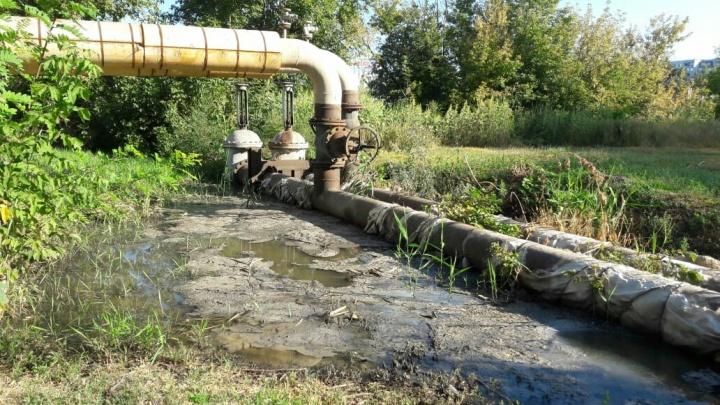 «Фекалии стекают под окна»: волгоградцы больше месяца страдают от зловонных рек