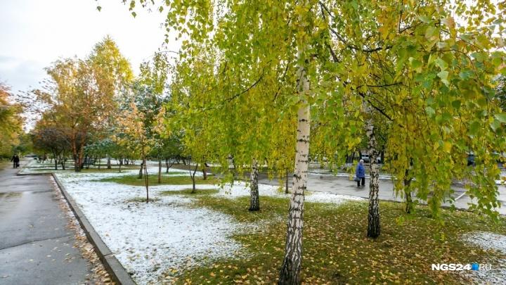 Первые серьезные заморозки идут в Красноярск