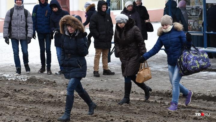 «Испытала стресс»: ярославна судится с мэрией из-за плохой уборки улиц от снега