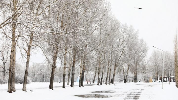 На Красноярск идёт аномальное тепло