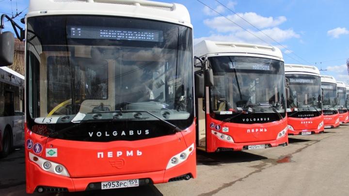 «Это начало реформы общественного транспорта»: в Перми возродился муниципальный автопарк