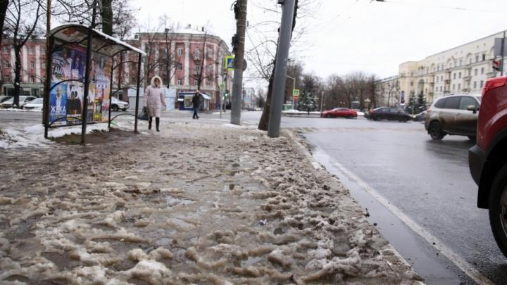 Ждите до следующего года: все остановки Ярославля покроют крышами лишь к 2019-му