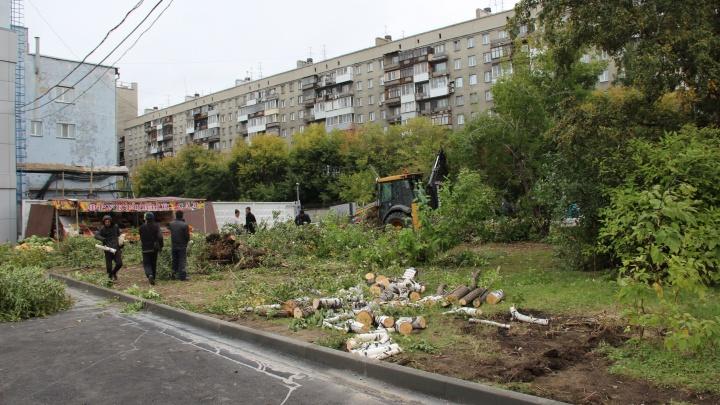 Возле ЦУМа начали рубить последние деревья