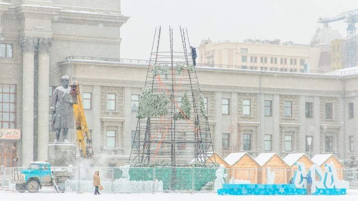 Стало известно, сколько елок установят к Новому году на площади Куйбышева