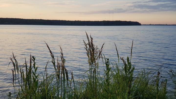 В реке Тобол недалеко от Кетово нашли тело 23-летнего молодого человека. СКР начало проверку