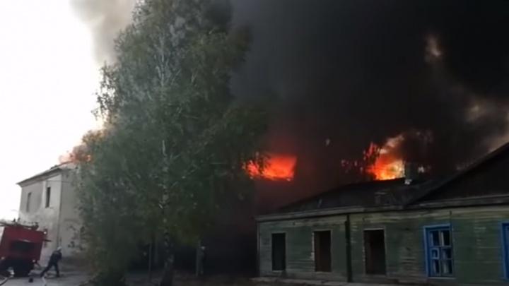 Жуткий треск и адское пламя: очевидцы сняли на видео крупный пожар в Новосемейкино
