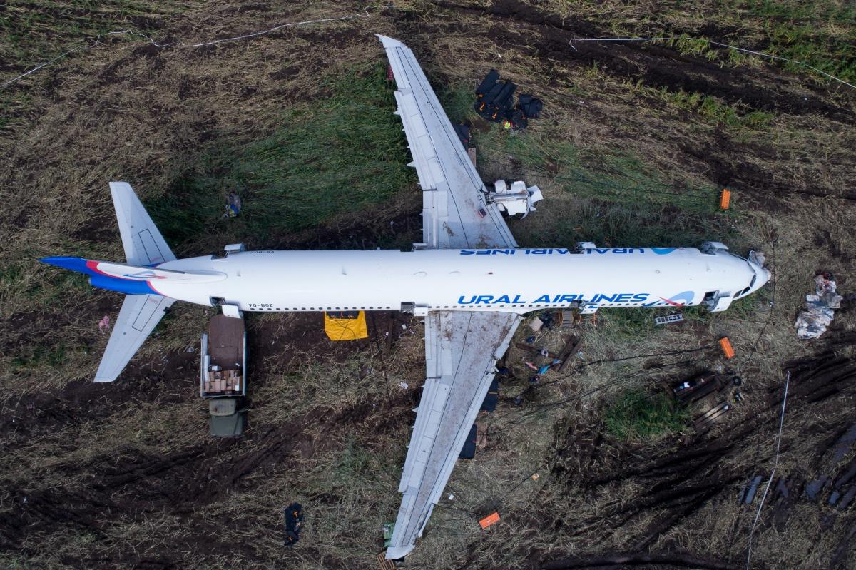 Борт «Уральских авиалиний» уже неделю стоит в кукурузном поле