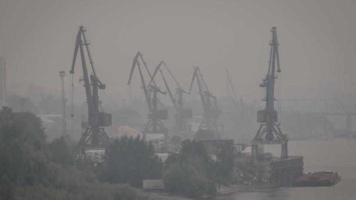 Выкурили из города: куда улететь из Новосибирска, чтобы спастись от смога