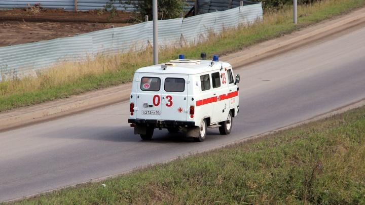«Их поразили расстояния»: в Омск приехали руководители скорой помощи из Израиля