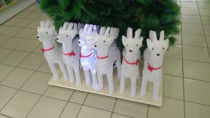 Шарики за 4 рубля и милые оленята: изучаем цены на елки и украшения к Новому году