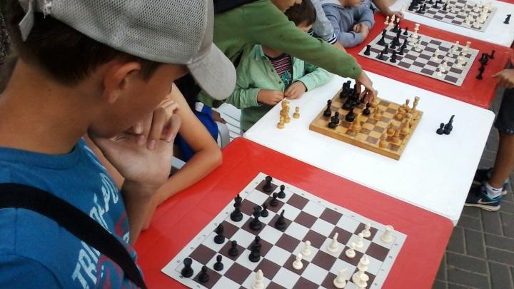 Шах и мат: волгоградцев зовут потренировать мозг на открытом воздухе