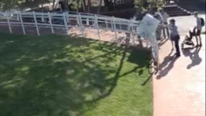 Надломился из-за тяжести: появилось видео поломки электропандуса с инвалидом на площади Славы