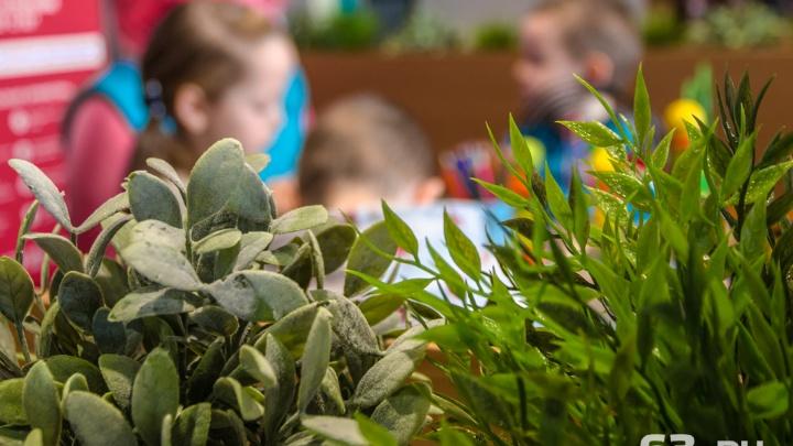 В самарских детсадах распределят свободные места