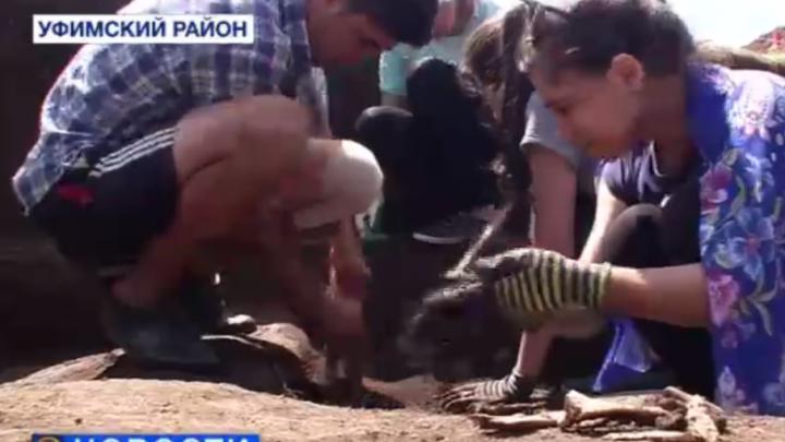 Под Уфой археологи нашли древнее поселение времен Золотой Орды