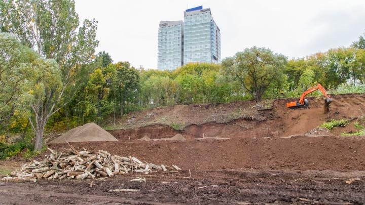 Пермская набережная «облысеет». Только на участке от спуска с Соборной до моста вырубят 755 деревьев