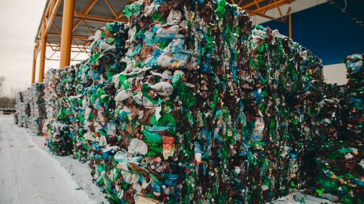 Тюменский мусор начали продавать на аукционе. Рассказываем, сколько стоят отходы горожан
