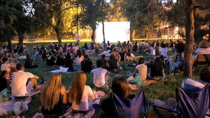 Как в голливудских фильмах: волгоградцев зовут посмотреть кино, лежа на траве