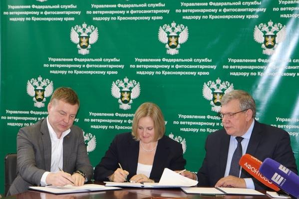 Соглашение о сотрудничестве подписали управление Россельхознадзора по Красноярскому краю, референтный центр и Ассоциация «Енисейский стандарт»