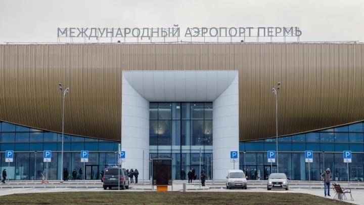 Не задекларировал валюту: в пермском аэропорту у пассажира рейса до Тбилиси изъяли 8 тысяч долларов