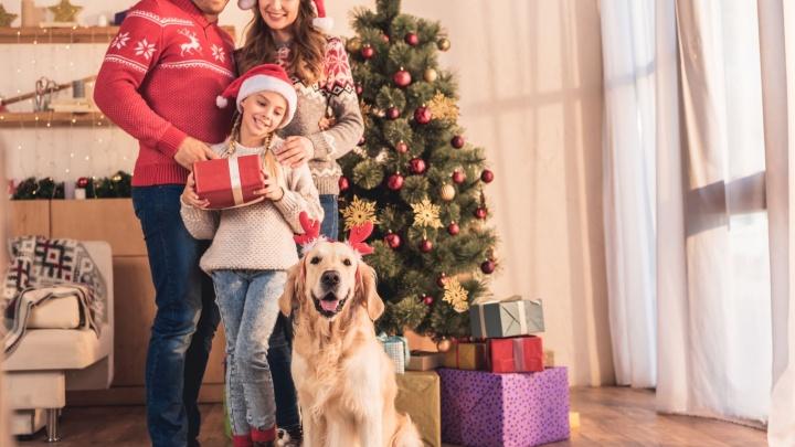 В Новый год с недвижимостью: архангельский застройщик доказал, купить квартиру без ипотеки — реально