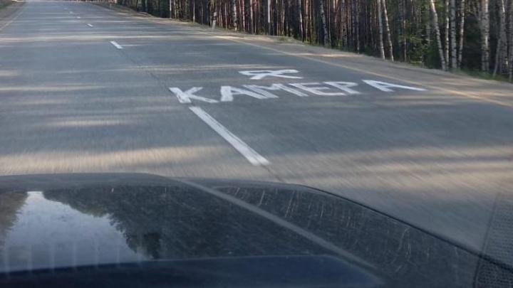 Борцы с камерами в кустах изрисовали дорогу до Нижнего Тагила предупреждающими надписями