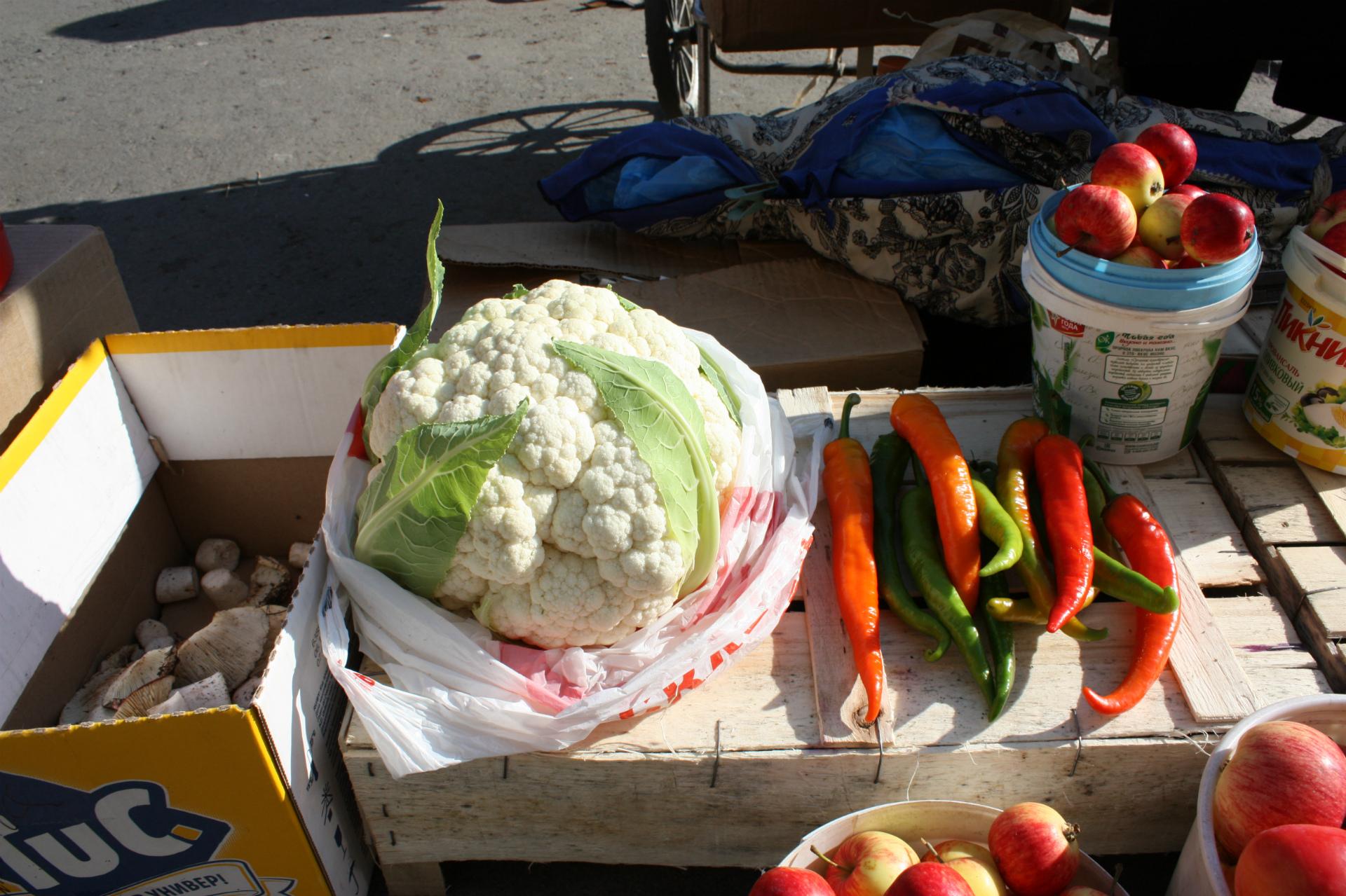 — Цветную капусту и пожарить можно, и в овощное рагу, и суп сварить! — перечисляют дачники