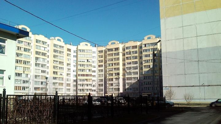 В Ярославле 13-летняя девочка выпала с девятого этажа: что спасло ей жизнь