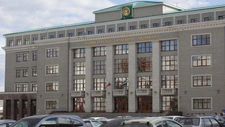 Новым заместителем министра сельского хозяйства Башкирии стал бывший учитель химии