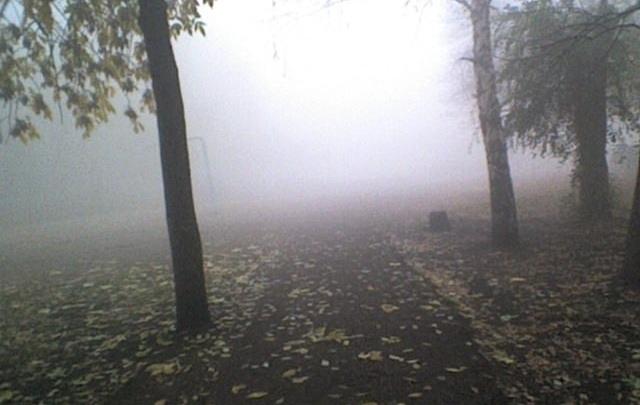 В Стерлитамаке в лесопосадке нашли тело подростка