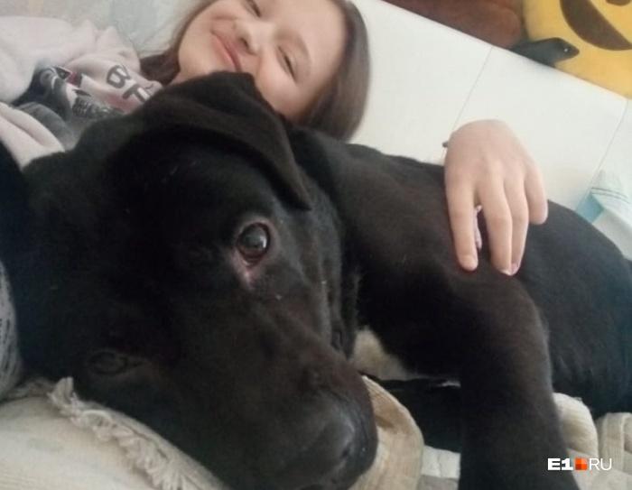 По словам Анастасии, пес очень контактный и уже подружился с ее дочерью