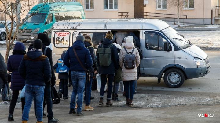 «Жеста доброй воли не будет»: уволенные маршрутчики Волгограда решили вернуться на дороги города