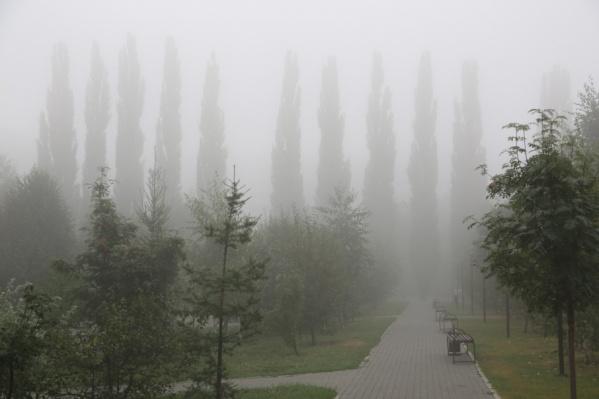 Люди, вещи, животные – в тумане всё выглядит иначе