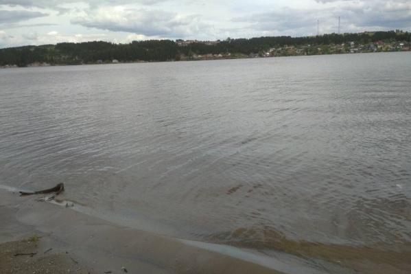 Тот самый берег, где школьницу искали пермские волонтеры, сотрудники МЧС и водолазы