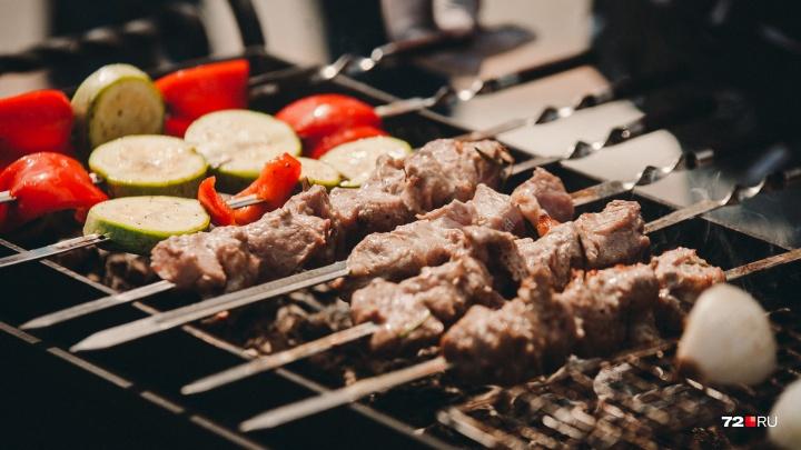 Едем на шашлыки! Карта мест, где в Тюмени можно пожарить мясо, и рецепты вкусных маринадов