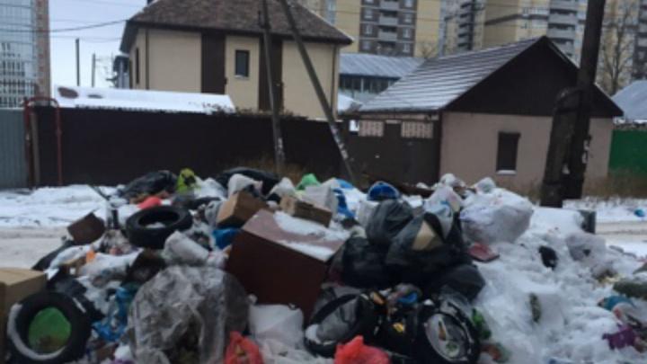 В Ростове банкротящиеся коммунальщики оставили 14-подъездный дом в завалах мусора и без дворников
