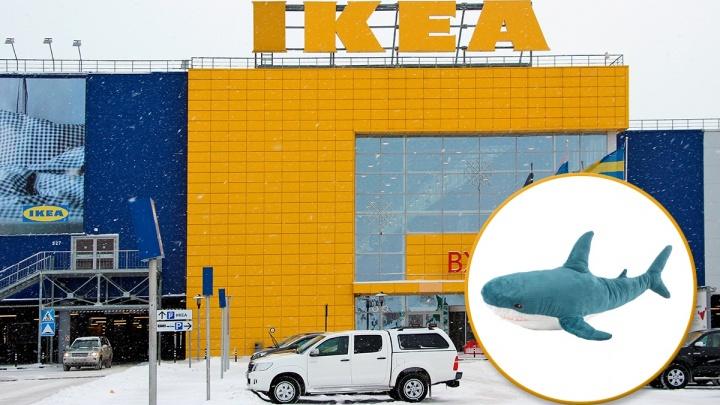 Омской IKEA пришлось ограничить продажу мягких игрушек из-за ажиотажа вокруг акулБлохэй