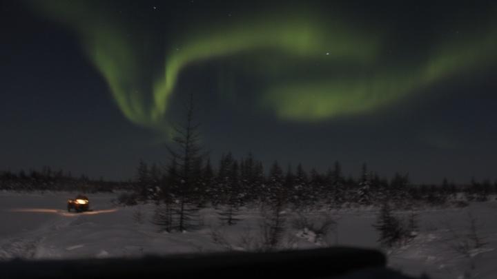 Новосибирцы проехали 3 тысячи километров на УАЗах, чтобы полюбоваться северным сиянием