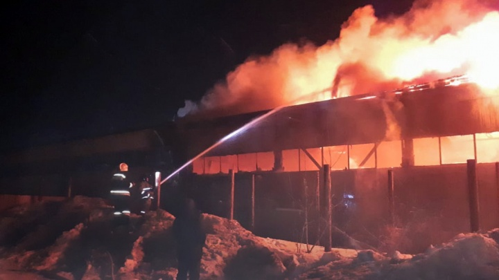 В Уфе ночью сгорел склад картона