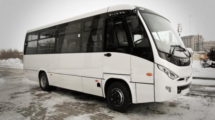 «В салоне, как в братской могиле»: жителей челябинского посёлка оставили без автобусов до города