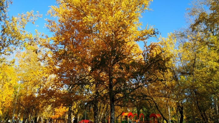 В Кургане октябрьское тепло подходит к концу