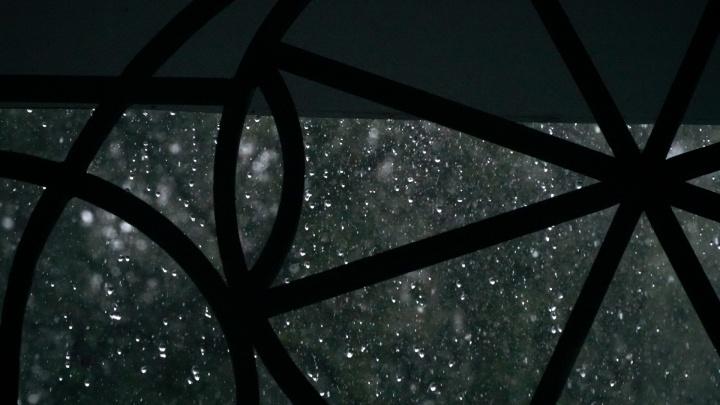 Дожди и похолодание: в Прикамье ожидается прохладная неделя