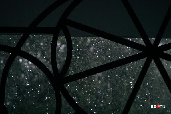 Дождь в Перми будет идти практически всю неделю