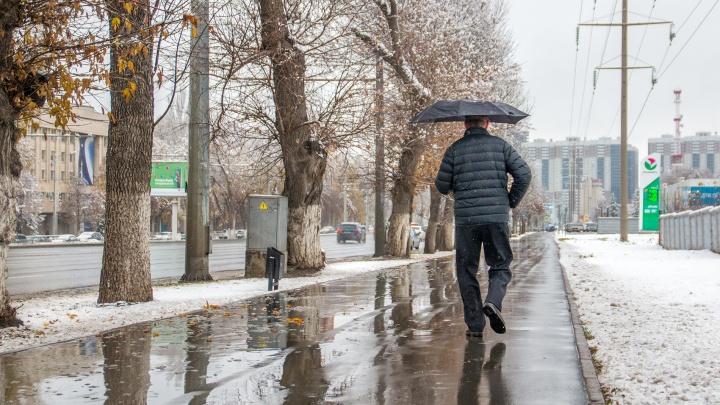В Самарской области январское потепление побило рекорд 1955 года