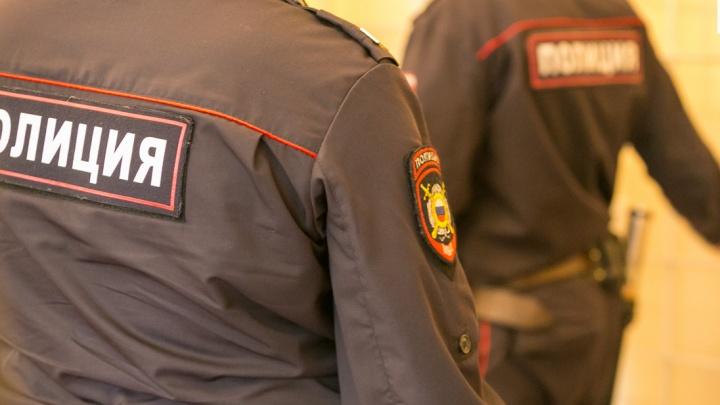 Сибирячка помогла полицейским задержать карабкающегося на второй этаж вора
