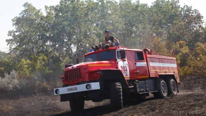 Волгоградская область в огне: за сутки в регионе потушили больше 20 природных пожаров