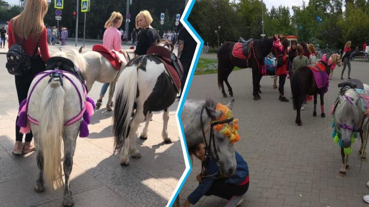 Невыгоняемые. Дети с лошадьми вернулись на Цветной бульвар вопреки запретам чиновников и полицейских